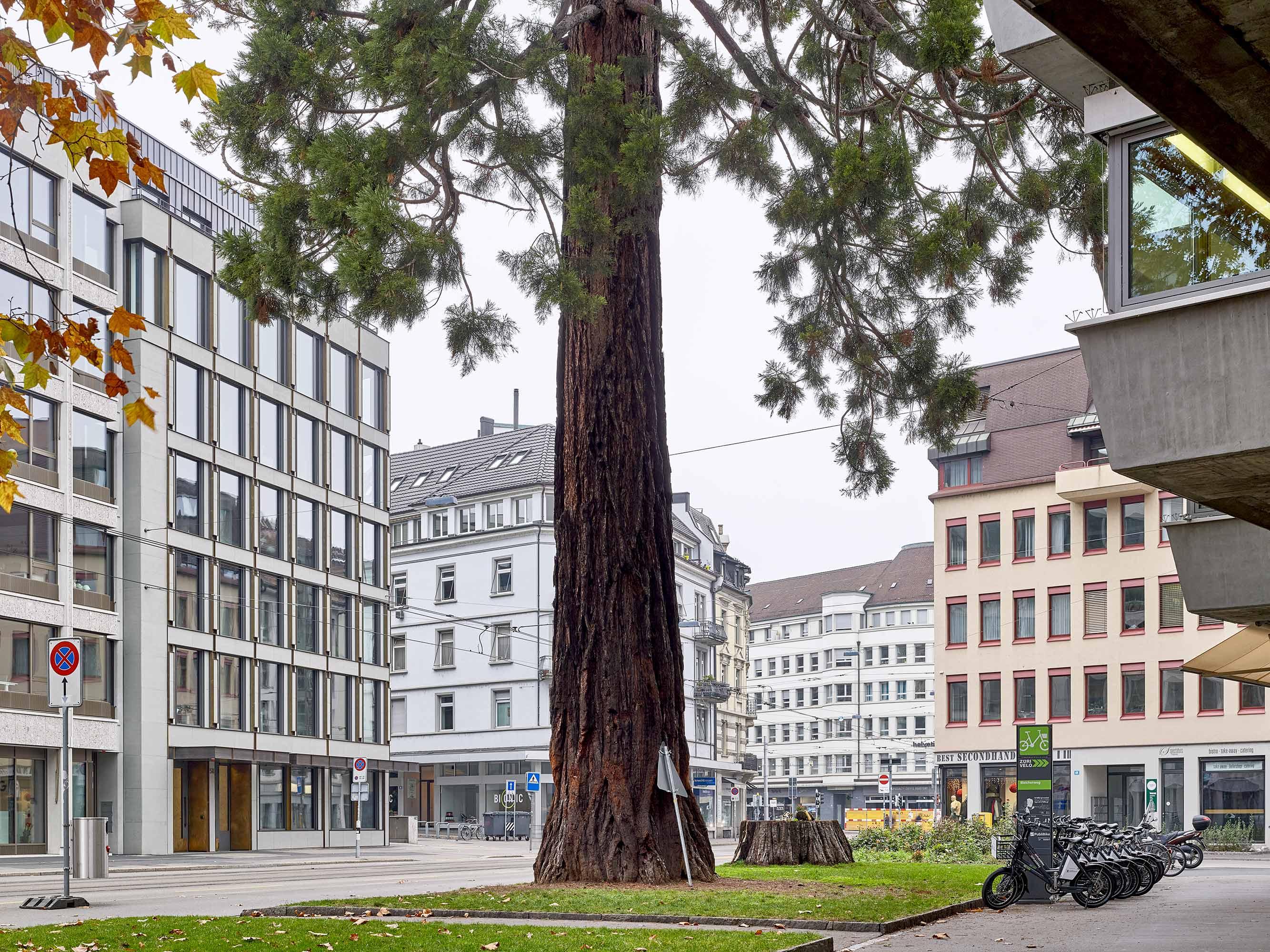 Geschäftshaus Bleicherweg  434/12