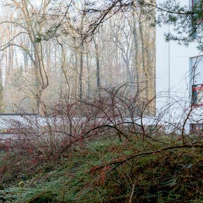 Wohnhaus Im Lohgraben